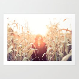 Fall Corn Sunset Art Print