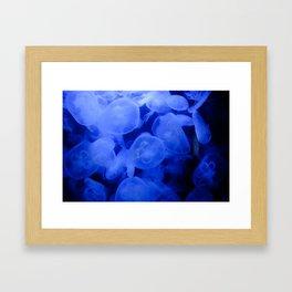 Baby Royal Blue Framed Art Print