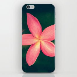 Pink Tropical Flower iPhone Skin