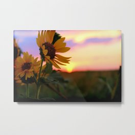 And The Sun Will Shine Metal Print