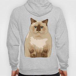 Fluffy CAT Hoody