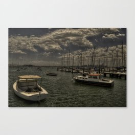 eggHDR1487 Canvas Print