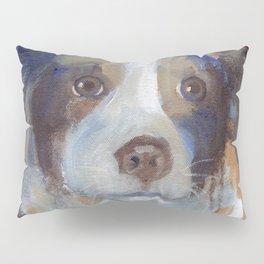 Sam Pillow Sham