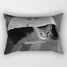Cleo in a Bag Rectangular Pillow