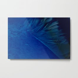Feather of ice Metal Print