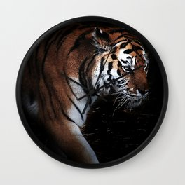 Tiger in search of Wall Clock