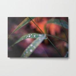 Rainy Awakening Metal Print