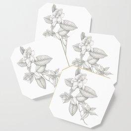Gardenia Coaster