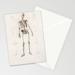 Vintage Print - Universal Dictionary of Natural History (1849) - Human Skeleton Stationery Cards