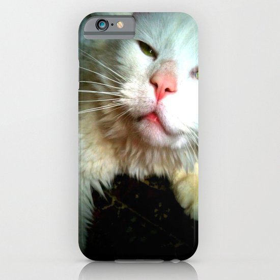 crazy kitty iPhone & iPod Case