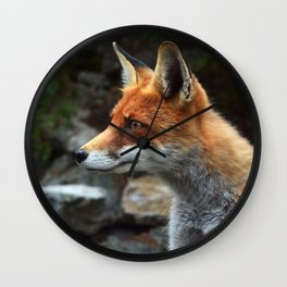Fox renard 4 Wall Clock
