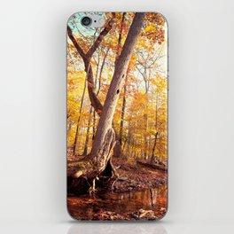 The Mystical Pond iPhone Skin