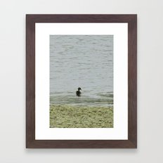In Search of Fishies Framed Art Print