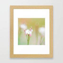 Tiny Dancer (1) Framed Art Print