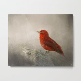 Song of the Summer Tanager 1 - Birds Metal Print