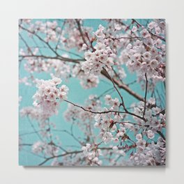 blossoms all over ~ color option teal Metal Print