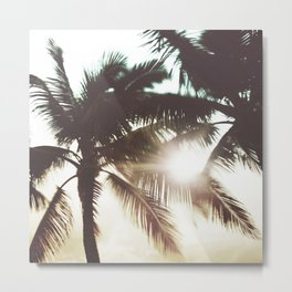 Sunshine Through Palms / Tropical Photography Metal Print