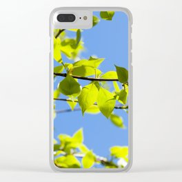 linden leaves, spring Clear iPhone Case
