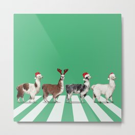 Christmas Llama The Abbey Road in Green Metal Print