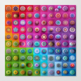 Colourful collection of hand painted mandala stones Canvas Print