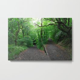 Enchanted Forest - Study VII Metal Print