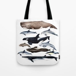 Atlantic whales, dolphins and orca Tote Bag