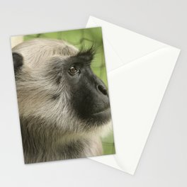 Monkey On The Lookout Stationery Cards