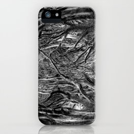 Avenue of trees iPhone Case