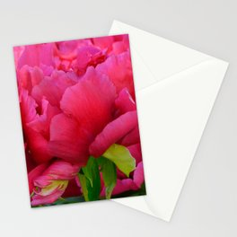 Dark Pink Tree Peony by Teresa Thompson Stationery Cards