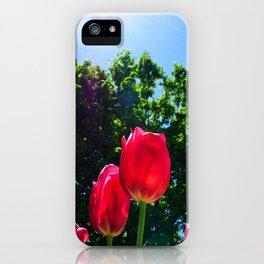 Skyward Tulips iPhone Case