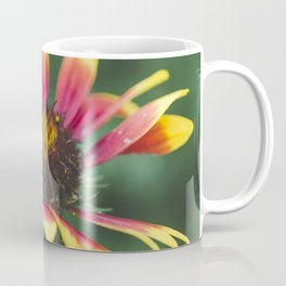 September flower Coffee Mug