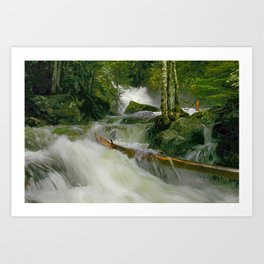 Deception Falls fine art print Art Print