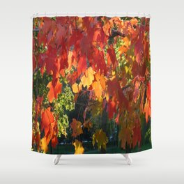 Autumn Fall Foliage Shower Curtain