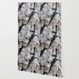 bark abstact no4 Wallpaper