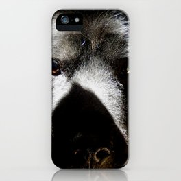 Serious in the sunshine iPhone Case
