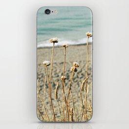 Coastal Love iPhone Skin