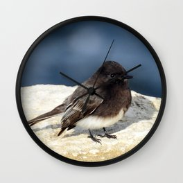 Black Phoebe Wall Clock