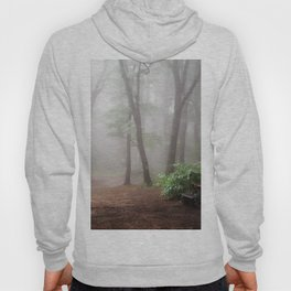 Misty Woods #adventure #photography Hoody