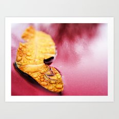 Yes, a leaf on my truck. Art Print