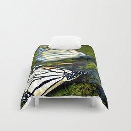 Monarch Butterfies Comforters