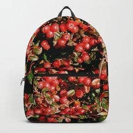 Little Red AbunDance Backpack