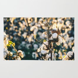Cotton Field 21 Rug
