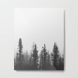 Foggy Trees in the Forest Metal Print