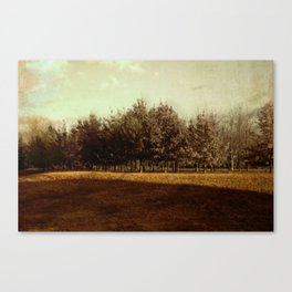grove Canvas Print