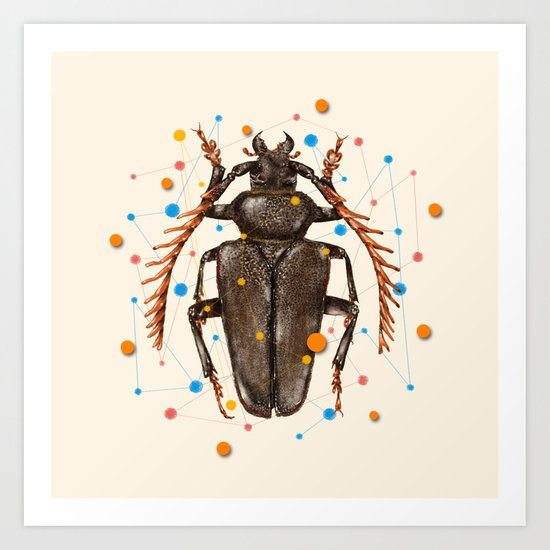 INSECT VIII Art Print