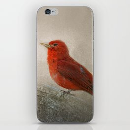 Song of the Summer Tanager 1 - Birds iPhone Skin