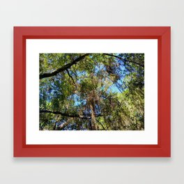 Under the Trees Framed Art Print