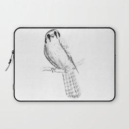 American Kestrel pencil front on Laptop Sleeve