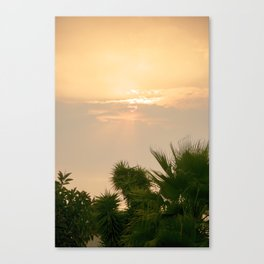 cloudy sky in the oasis Canvas Print