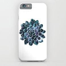 Succulent Echeveria I Slim Case iPhone 6s